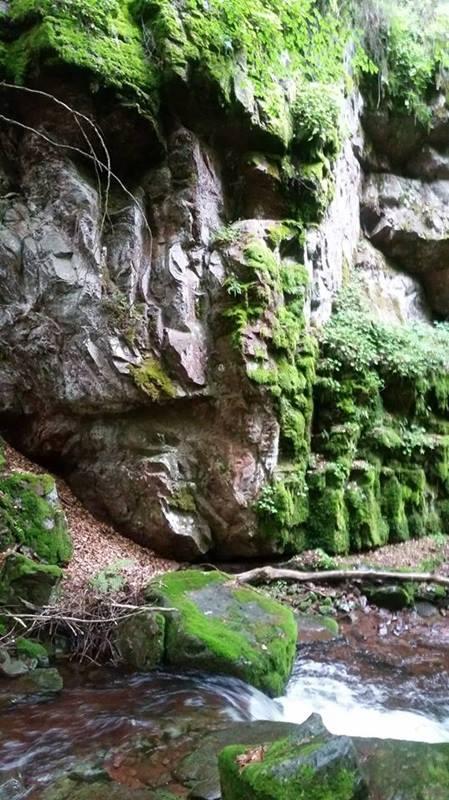 Vodopadi Vurnje